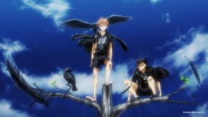 Вороны (Ravens)