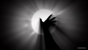 Рука у солнца