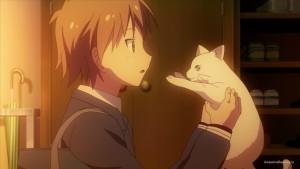 Сората с кошкой