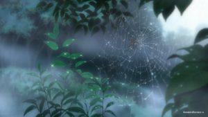 Паук в лесу (Spider in the forest)