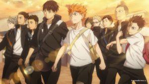 Команда школы Карасуно (Karasuno Team)