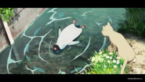 Пингвин плавает
